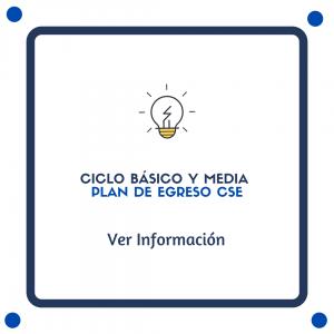 Ciclo básico y media Proceso de diagnóstico y nivelación de aprendizajes CSE (5)